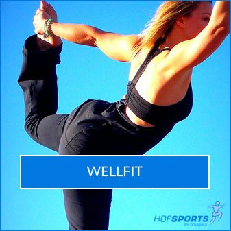 WellFit Fitnesskurs HofSports